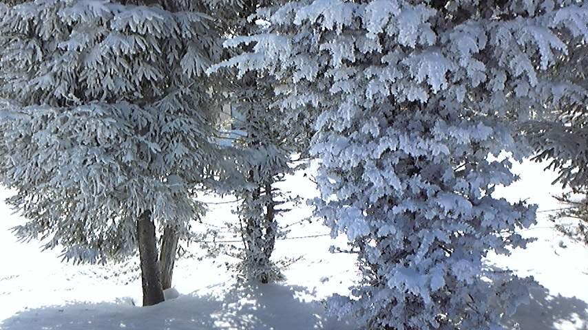 長野冬景色